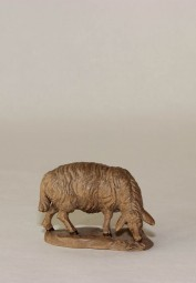 Schaf grasend Krippenfigur Gebeizt