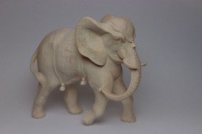 Elefant Natur