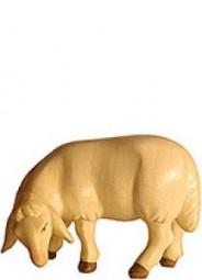 Schaf grasend Krippenfigur Lasiert