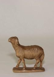 Schaf stehend Krippenfigur Gebeizt