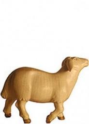 Schaf stehend Krippenfigur Lasiert
